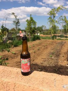 La Gorge Fraîche, bière artisanale à Béziers, s'invite dans le jardin de Diégo