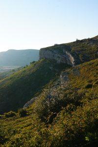 raffraîchissez vous avec nos bières artisanales Sud de France